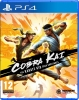 Cobra Kai: The Karate Saga Continues PS4