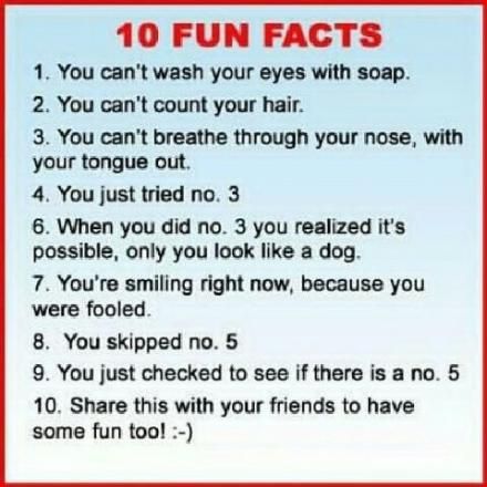 10 Fun Fact-actualities